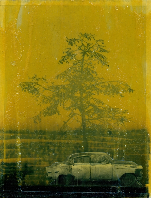 , 'Fake tree man (Third) II,' 2014, Arróniz Arte Contemporáneo