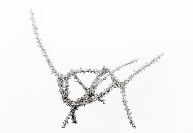 , 'Object 191,' 2016, Anna Nova Gallery