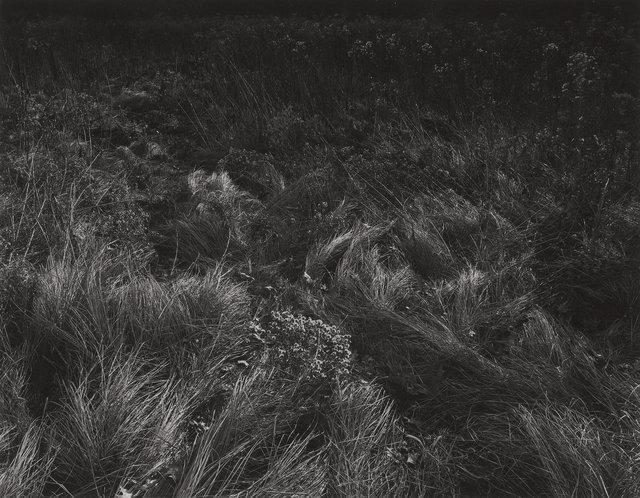Harry Callahan, 'Aix-en-Provence', 1957, Robert Mann Gallery