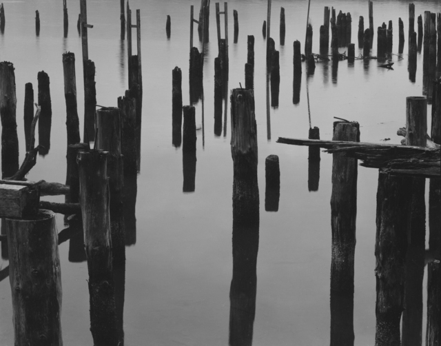 , 'Wharf Piles and Fog, Oregon,' 1968, Photography West Gallery