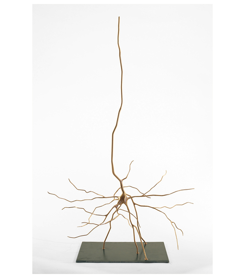 , 'Cajal's Pyramid,' 2014, Seraphin Gallery