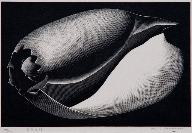 ", '""Shell"",' 1935, Catherine E. Burns Fine Prints"