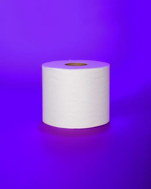 , 'Toilet Paper,' 2015, Janet Borden, Inc.