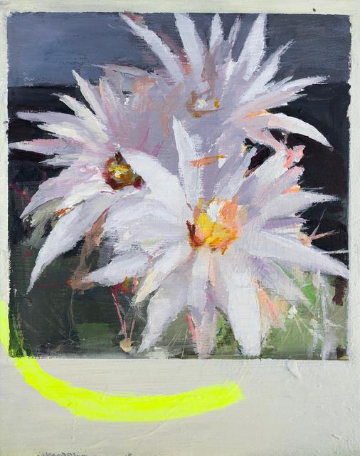 , 'CACTUS FLOWER #1,' 2018, saltfineart