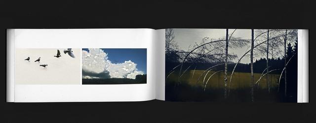 Hans von Schantz, 'Volume #9', 2019, Galleria Heino