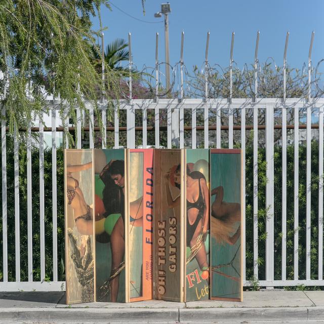 , 'Card Screen (Oh Those Gators),' 2014, Nina Johnson
