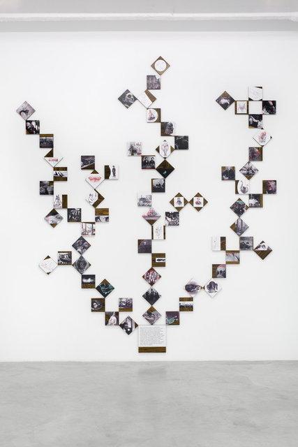 Iñaki Bonillas, 'Darwin', 2012, Galerie Nordenhake