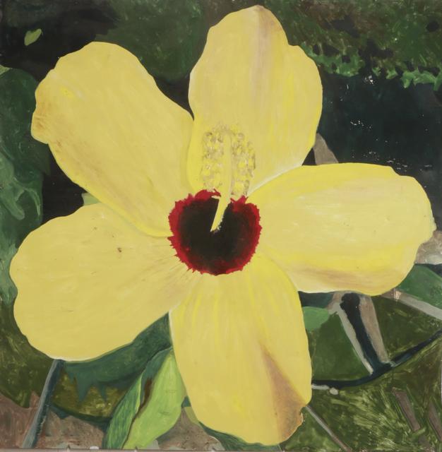 , 'Yellow Chinese Rose,' 2016, Smart Gallery BA