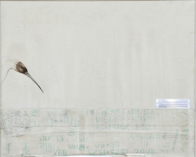 , 'EDNA: Leucogeranus leucogeranus (Siberian Crane),' 2015, Mark Moore Fine Art
