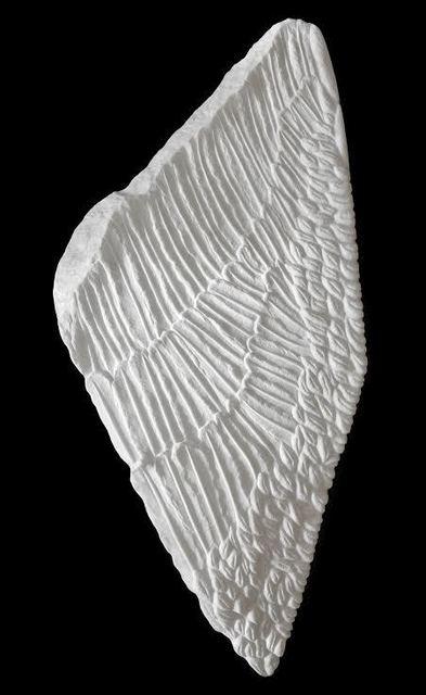 Jyl Bonaguro, ' Lifted', 2018, En Foco Gallery