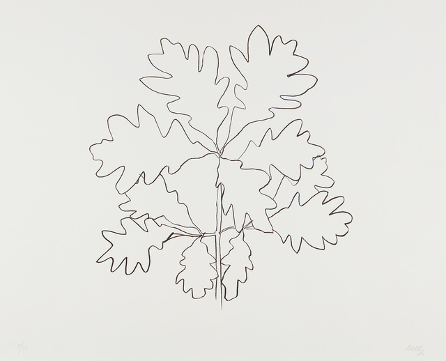 Ellsworth Kelly, 'Oak VI, from Series of Oak Leaves', 1992, Phillips