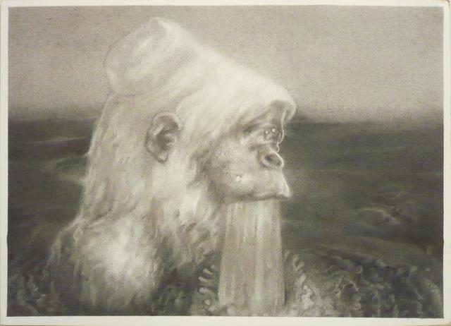 , 'gorilla,' 2013, KAYOKOYUKI