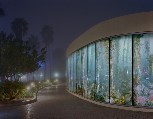 , 'Aquarium in the Fog,' 2014, Gallery Luisotti
