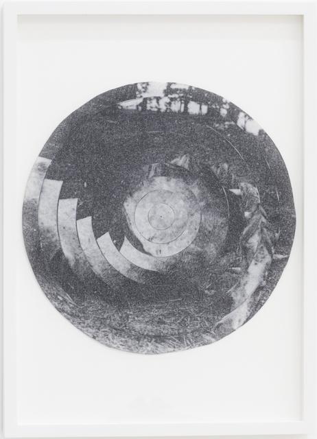 , 'Iris No.4 (Horse),' 2012, narrative projects
