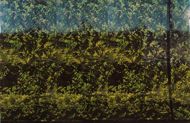 , 'Untitled (1729),' 2017, Cerulean Arts