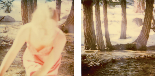 Stefanie Schneider, 'Fairytales, dyptych', 2006, Photography, Analog C-Prints, hand-printed by the artist, based on two Polaroids, mounted on Aluminum with matte UV-Protection, Instantdreams