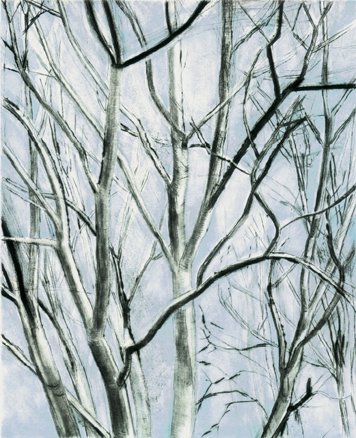 , 'Pine Oak Detail,' 1999, Crown Point Press