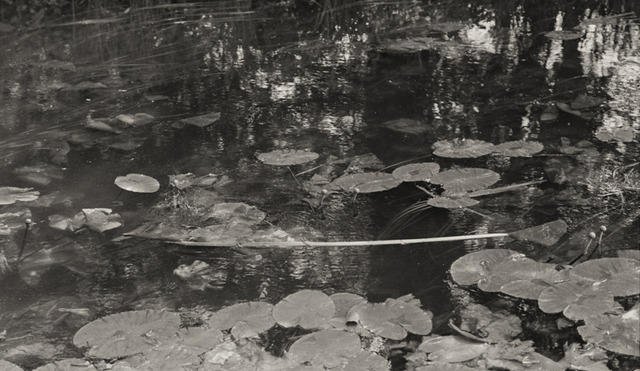 , 'Waterscapes #13,' 1999, Hamiltons Gallery