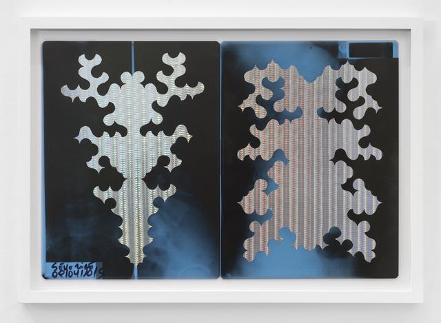 , 'Bicho raro (l'un est le double de l'autre),' 2016, Galerie Laurence Bernard