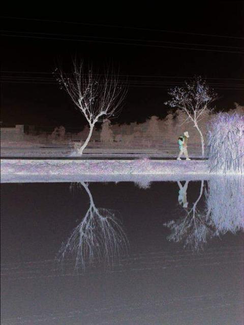 , 'Fish Pond Mirror,' 2007, Walter Wickiser Gallery