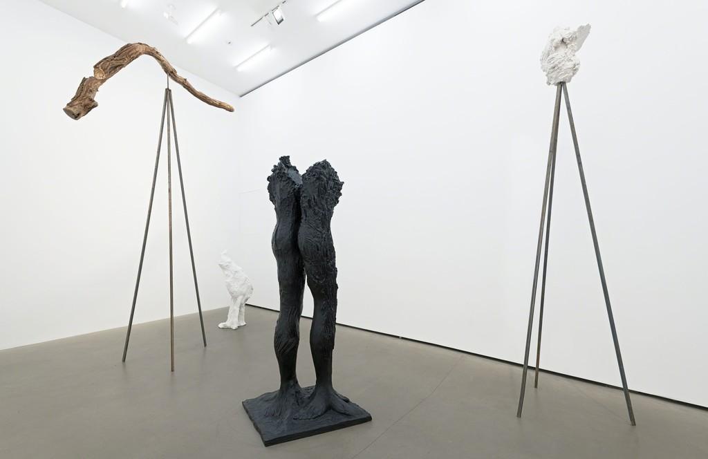 Exhibition view, 2017, Galerie EIGEN + ART Berlin, Photo: Uwe Walter, Berlin