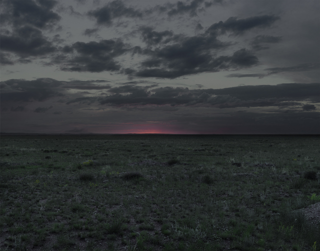 , 'The Polygon Nuclear Test Site XII (Dust To Dust), Kazakhstan,' 2011, Flowers