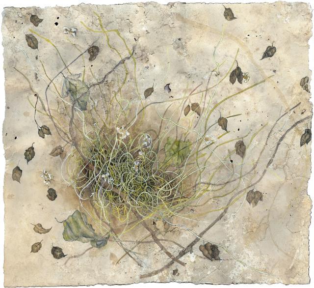 Tina Salvesen, 'Birdsong', 2017, Flow 305