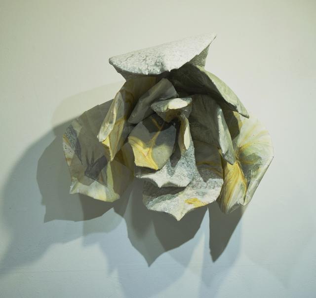, 'cosmic_echeveria_lilacina,' 2016, Art Front Gallery