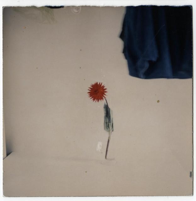 , 'Nakazora. #815,' , Valid Foto Bcn Gallery