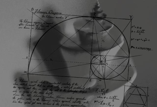 Don Freeman, 'Fibonacci Drawing and Shell', 2019, JHB Gallery