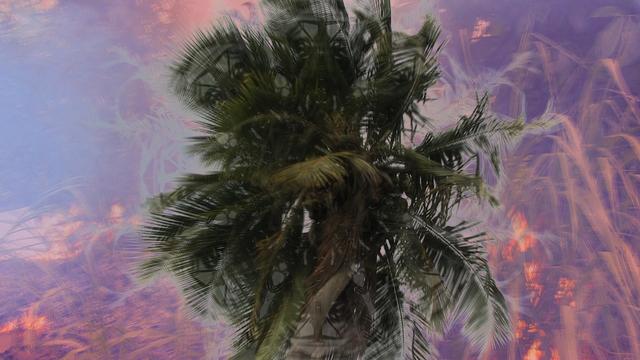 , 'HedonHeathen 1,' 2013, Gallery NAGA