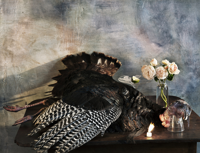 Vera Mercer, 'Old wild  Turkey', 2012, °CLAIR Galerie