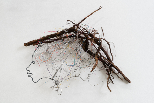 , 'Technical Wires in My Roots,' 2017, James Fuentes