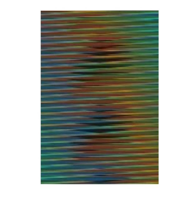 , 'Induccíon cromática a doble frecuencia Panam 10,' 2011, Galeria Freites
