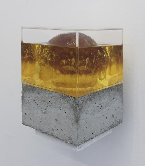 , 'Future Friture – Turritopsis Dohrnii,' 2017, Marie Kirkegaard Gallery