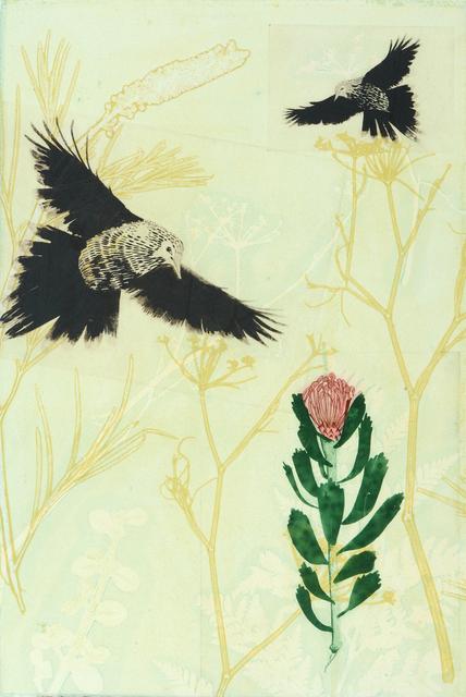, 'Wattlebirds have found a precious pincushion protea,' 2019, Queenscliff Gallery & Workshop