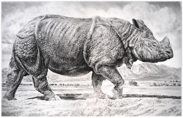 , 'Rhino II,' 2016, Sears-Peyton Gallery