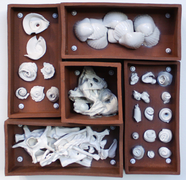Evan Blackwell, 'Relics of Experience: Shells & Bones', 2014, Foster/White Gallery