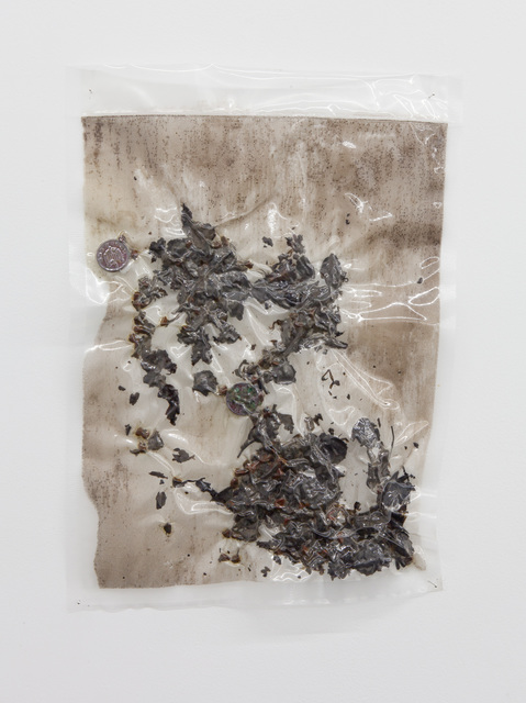 , 'Make it Endure I,' 2016, Tatjana Pieters