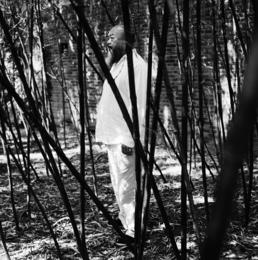 Ai Weiwei, Beijing