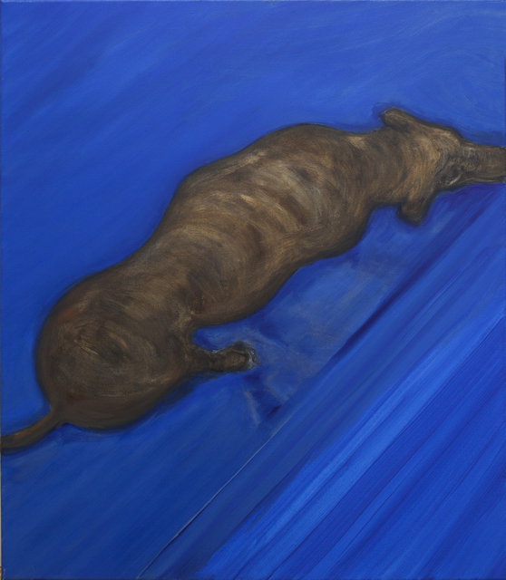 , 'Dog (seen from above, blue),' 2016, Galerie Bart