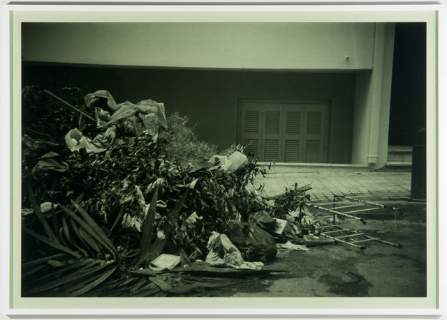 , 'Auxiliary Flora (II) (Passive Voice),' 2013, Laura Bartlett