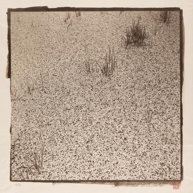 , 'Rainy Moat, Takato Castle, Ina 2, Nagano,' 2015, Micheko Galerie