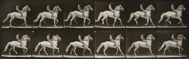 , 'Animal Locomotion: Plate 590 (Nude Man Riding Horse),' 1887, Huxley-Parlour