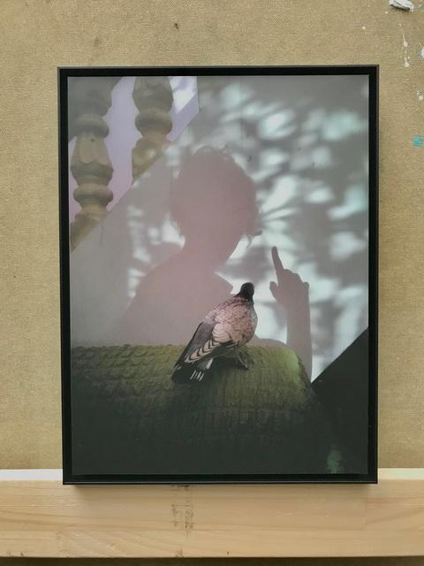 , 'Untitled / Taube, 01/12,' 2017, contemp-rent