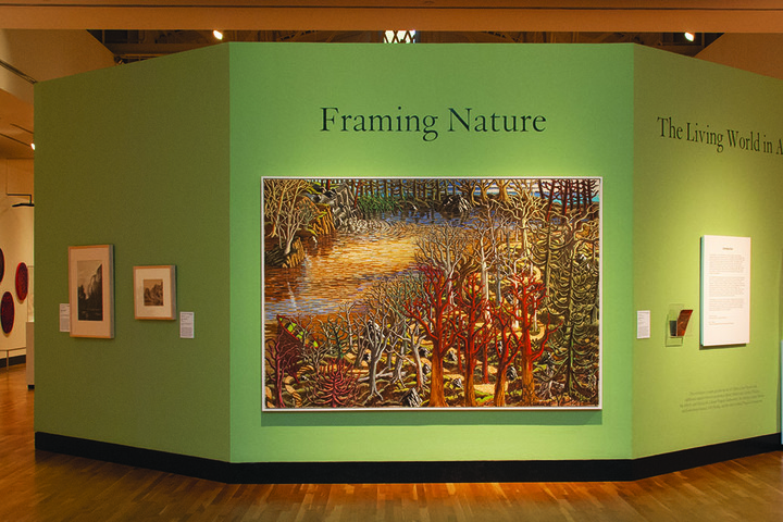 "Installation view: ""Framing Nature: The Living World in Art"""