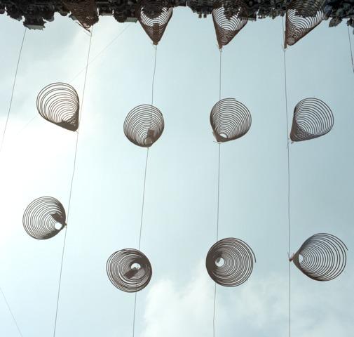 , 'Coils, Vietnam,' 2004, Ricco/Maresca Gallery