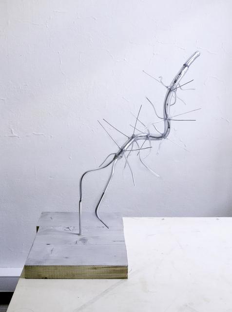 , 'PISA (Hallucigenia Modell),' 2015, Galerie Krinzinger