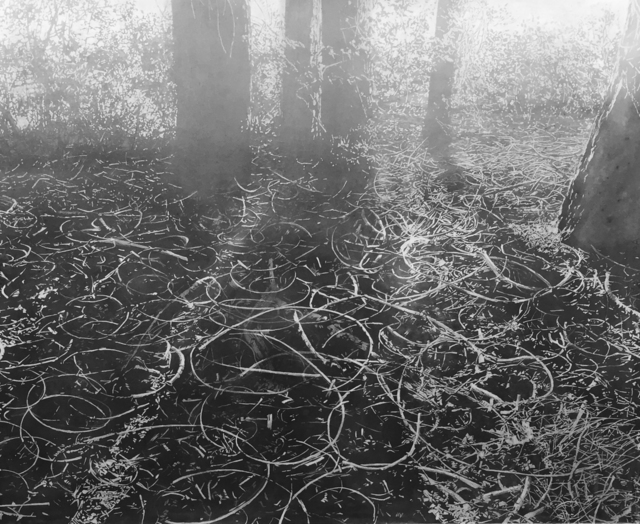 Mila Libman, 'Stillness 2', 2018, K. Imperial Fine Art