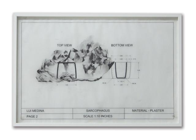 , 'Untitled (Natural History 4),' 2013, Artinformal